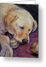 Patiently Waiting Greeting Card by Susan Jenkins