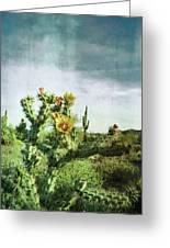 Patina Green Desert Bloom Greeting Card