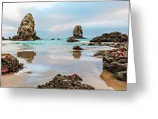 Patrick And Friends Visit Cannon Beach Greeting Card