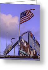 Patriotic Egret Greeting Card