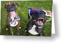 Patriotic Pups Greeting Card