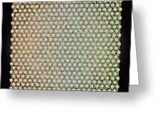 Pattern 176 Greeting Card
