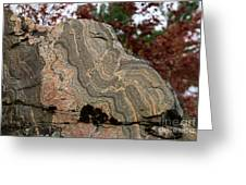 Pattern In A Gneiss Rock Greeting Card