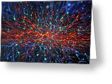 Patterns Of The Universe Greeting Card