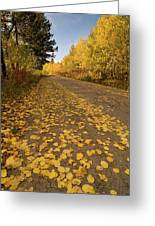 Paved In Gold Greeting Card