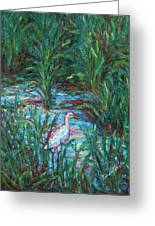 Pawleys Island Egret Greeting Card
