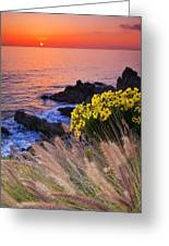 Pch Sunset Greeting Card
