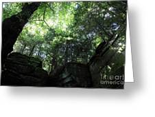 Peace All Around Greeting Card