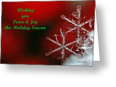 Peace And Joy Christmas Card Two Greeting Card