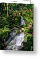 Peace And Tranquility Too Greeting Card
