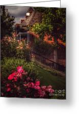 Peace Before The Storm - Roses Greeting Card