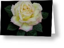 Peace In Rain-1 Cutout Greeting Card