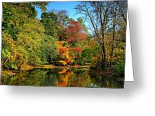 Peaceful Calm - Allaire State Park Greeting Card