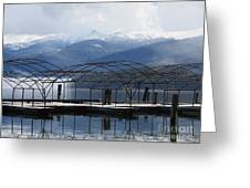 Peaceful Docks At Priest Lake Greeting Card