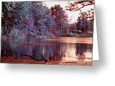 Peaceful In Infrared No2 Greeting Card