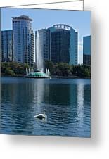 Peaceful Lake Eola Greeting Card