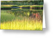 Peaceful Marsh Greeting Card