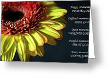 Peaceful Moments Greeting Card