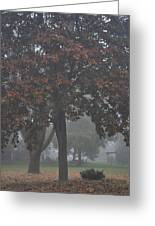 Peaceful Morning Mist Greeting Card