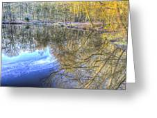 Peaceful Pond Reflections  Greeting Card