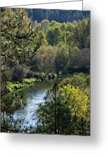 Peaceful River Greeting Card