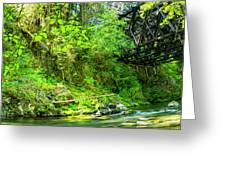 Peaceful Small Creek Under Kinsol Trestle, Vancouver Island, Bc, Canada 1. Greeting Card