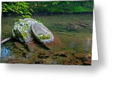 Peaceful Transparency. Greeting Card