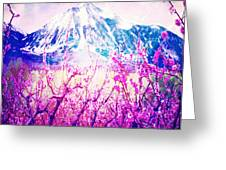 Peach Blossoms And Mount Lanborn Vi Greeting Card