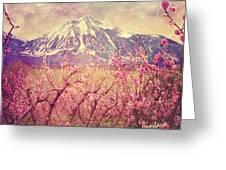 Peach Booms And Mount Lamborn Greeting Card