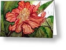 Peach Drama Greeting Card