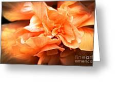 Peach Ripples Greeting Card
