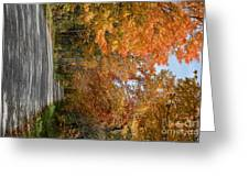 Peacham Side Road Greeting Card