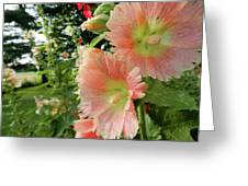Peaches And Petals Greeting Card