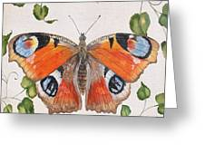 Peacock Butterfly-jp3878 Greeting Card