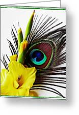 Peacock Feather And Gladiola 3 Greeting Card