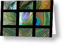 Peacock Feather Mosaic Greeting Card