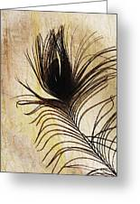 Peacock Feather Silhouette Greeting Card