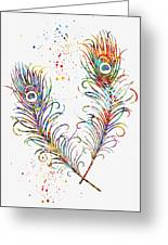 Peacock Feathers-colorful Greeting Card