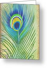 Peacock Feathers-jp3609 Greeting Card
