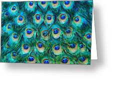 Peacock Feathers Greeting Card by Nikki Marie Smith