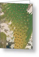 Peacocks And Cherry Tree Greeting Card