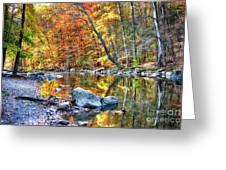 Peak Fall Foliage At The Black River Greeting Card