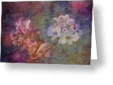 Pear Blossom Morning Impression 8941 Idp_2 Greeting Card