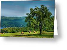 Pear Tree And Hayfield Greeting Card