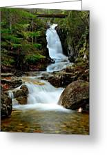 Pearl Cascade Greeting Card