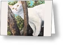 Pearl Up A Tree Greeting Card