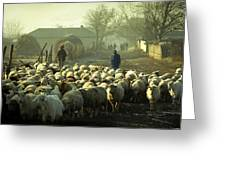 Peasants And Herd On The Village Path Greeting Card