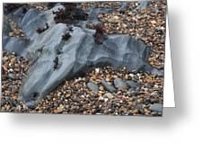 Pebble Beach Rocks 8715 Greeting Card