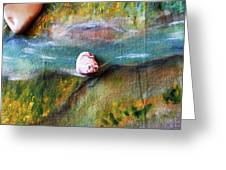 Pebbles At  The Stream Greeting Card by Augusta Stylianou
