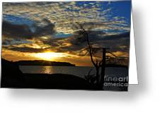 Pebbles  Beach Sechelt  Greeting Card